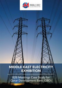 AladdinB2B   Middle East Electricity Exhibition Conference Successful Story