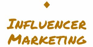 AladdinB2B | Influencer Marketing Successful Story